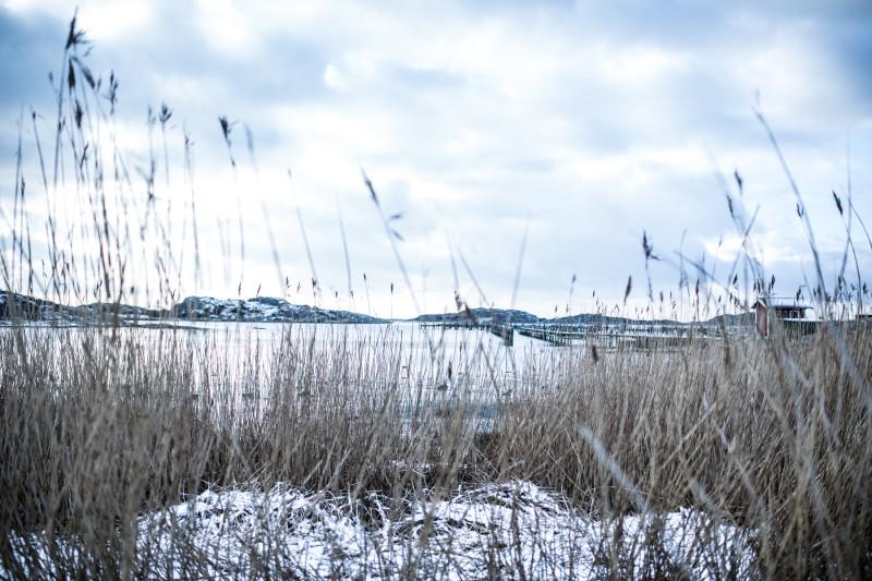 schweden_landschaft (1)